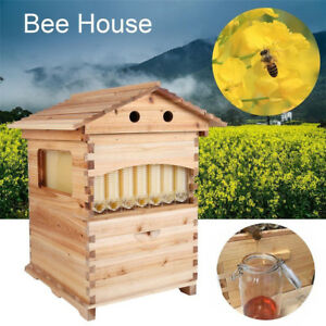 Cedarwood Super Beekeeping Brood House Box For 7 Auto Honey Bee Hive Flow Frames