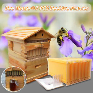 7pcs Auto Honey Beehive Frames wooden Beekeeping Brood Box All Accessories Us