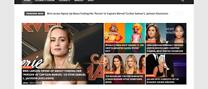 Established Profitable Celebrity News Online Business Turnkey Website