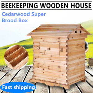 Cedarwood Super Beekeeping Beehive House Box For 7 Auto Honey Bee Hive Frames Us