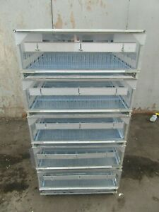 Chick Brooder Gqu 0534 5 Unit On Casters Chicken Brooder