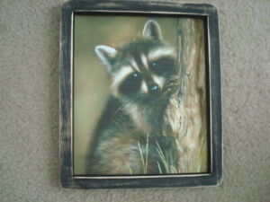 Primitive Country Print Raccoon In Tree Black Frame 9 X 11 1 2