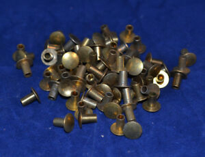 Tubular Rivets Brass Plated 4 16 Pack Of 150 b106