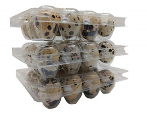 Quail Egg Plastic Cartons Pack Of 50 Holds 12 Quail Or Small Eggs Food 50