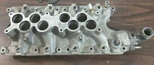 Ford Mustang 5 0 302 V8 Pro Ported Matched Afr Renegade Heads Gt40 Lower Intake