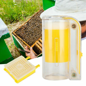 Plastic Beekeeping Rearing Cup Kit Set Bee Queen Cages Equipment Tools