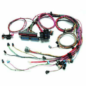 Painless Wiring 99 02 Gm Ls1 Fuel Inj Wiring Harness P n 60508
