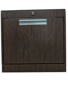 Cygnus Bv2423 Wall Hallway Laptop Or Computer Cabinet With Metal Chassis