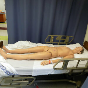 3b Scientific Unknown Model Patient Care Teaching Manikin W Organs