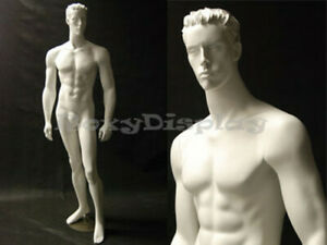 Male Mannequin Manequin Manikin Dress Form Display md cct6w