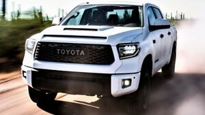 Toyota Tundra Trd Pro Grille 2018 20 53101 0c070 A0 Super White Oem