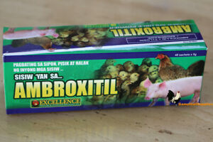 Ambroxitil full Box 48 Packs Poultry Supplies Antibacterial antiinfective
