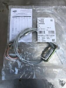 10 Cable 3m Protecta 2190104 Twin dual ring Tie off Adaptor Fall Arrest Anchor