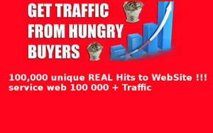 100 000 Unique Real Hits To Website Service Web 100 000 Traffic