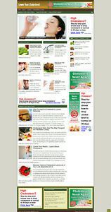 Lower Cholesterol Advice Blog Affiliate Website With Banners