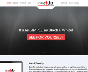 Work From Home Turnkey Internet Business Website With Hosting Make Money Online