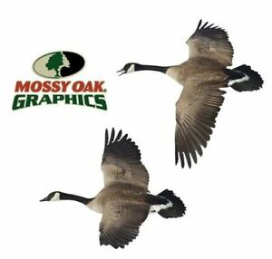Mossy Oak 13009 Decal