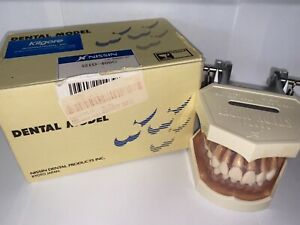 Kilgore Dental Study Model