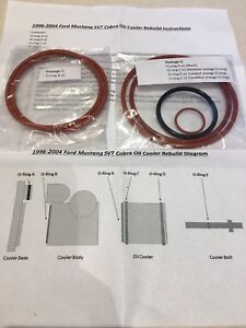 1996 2004 Ford Mustang Svt Cobra Oil Cooler O ring Rebuild Kit 4v 2v Gt Mach 1