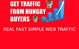 Real High Quality Organic Website Traffic 100 Real Web Traffic Seo