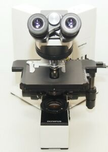 Olympus Bx50 Microscope With Wh10x 22 Eyepieces Plan 10x 100x Objectives