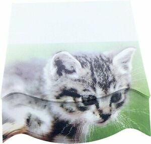 4a 4a 8073 3d Shape Printed Sticky Notes Cute Designs American Wirehair 100