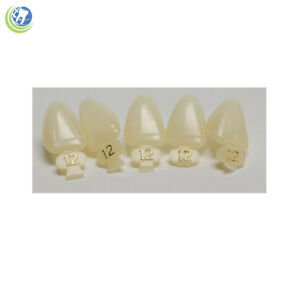 Dental Polycarbonate Temporary Crowns 12 urc Upper Right Central 5 pack