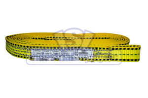 Lifting Web Sling 1 X 10 Ft One Ply Flat Eye Type 3 Polyester