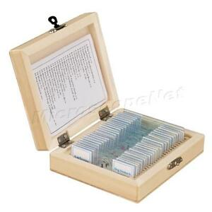 25pc Glass Prepared Basic Science Microscope Slides With Wooden Box