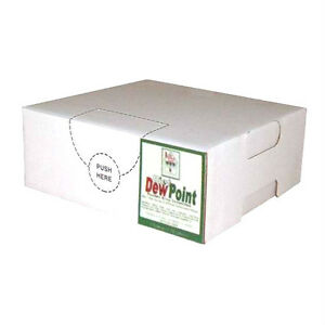 Diet Dew Point Syrup Concentrate Soda Pop Bag N Box Gallon makes 6 Gallons