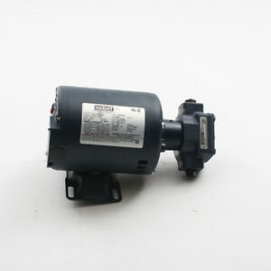 New Haight Hot Oil Pump motor 5 gpm Fits Broaster Oem part 10800 Ships Today