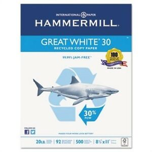 Great White Recycled Copy Paper 92 Brightness 20lb 8 1 2 X 11 5000 Shts ctn 2pk