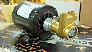 Procon Pump Kit With Motor Brass Procon Pump Dual Voltage Motor
