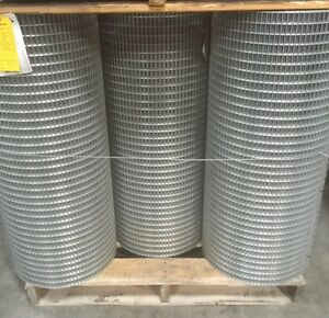 5x 1 14g 36 x100 Galvanized Welded Wire Mesh Rolls gaw