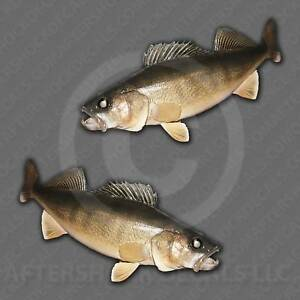 Walleye Fishing Fish Decal Sticker Set For Truck Car Window Boat Tackle Box Usa
