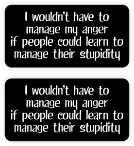Funny MANAGE MY ANGER Hard Hat Stickers | Helmet Decals Construction Quote USA