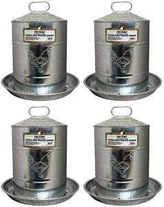 4 Free Range 4213 5 Gallon Double Wall Galvanized Poultry Waterer Drinker