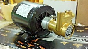 Procon Pump Kit A 1b Includes Motor Brass Procon Pump Dual Voltage Motor