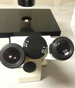 Zeiss Telaval 31 Inverted Phase Contrast Microscope W 5x 10x 20x Achromat Ph