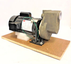 3 4 Hp Stainless Steel Centrifugal Pump 15 208 230v 1 Phase 1 1 2 Npt Inlet out
