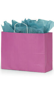 Paper Shopping Bags 100 Hot Pink Magenta 16 X 6 X 12 Retail Merchandise Gift