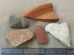 Nice Lot Of Ancient Pottery Shards And Oyster Shell L34w