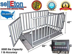 Ntep 60 X 36 X 42 Cattle livestock animal Cage Scale System At 5000 Lb X 1 Lb