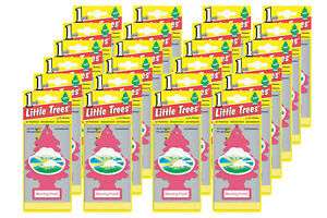 Little Trees Hanging Car And Home Air Freshener morning Fresh Scent Pack Of 24