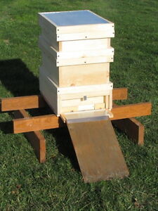 Honey Maker Bee Hive The Bees Make More Honey