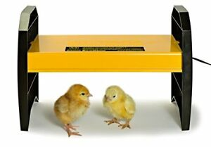 Brooder For Newly Hatched Chicks Ducklings Warmer Heater Indicator Adjustable