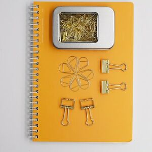 100 Pcs Paper Clips And 10 Pcs Binder Clips Assorted Size Gold Clips With Storag