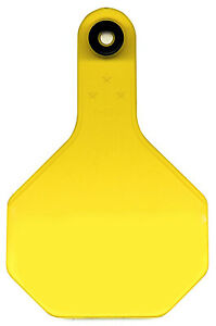 All American Livestock Tag Blank Medium Yellow 25 pk