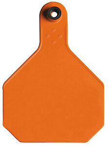 All American Livestock Tag Blank Large Orange 25 pk