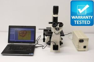 Zeiss Axiovert 25 Cfl Inverted Fluorescence Microscope With Xy Stage
